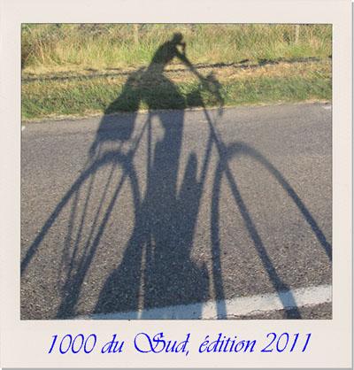 04-polaroid-img_3654