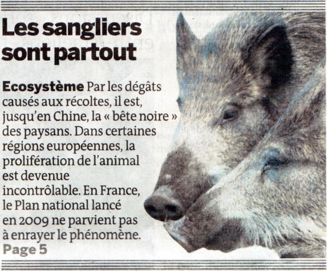 Le Monde du 16 septembre 2010, Sangliers