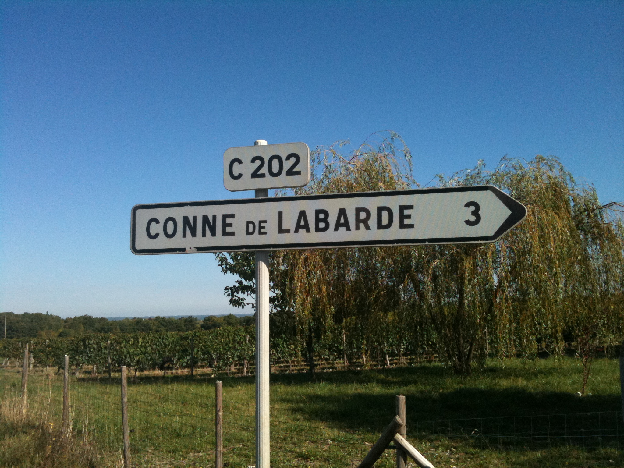 Conne de Labarde